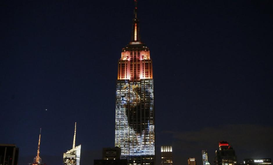 Empire State Building Pays Tribute To Endangered Animals, Remembers Cecil The Lion